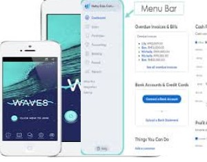 The Wave App, Wave App, The Wave Accounting App, Top best Accounting App